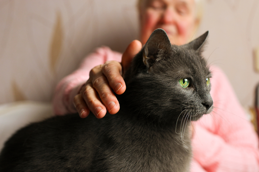 Senior woman petting a black cat with green eyes